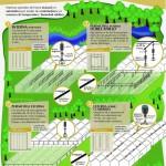 Infografía Antihelada